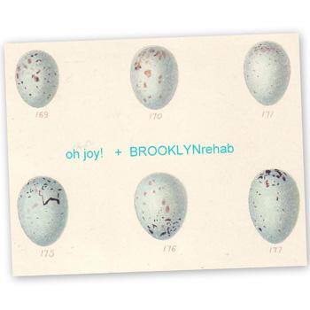 Ohjoybrooklynrehab