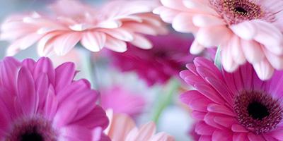 Blog_bouquet2