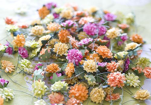CC_fleurs
