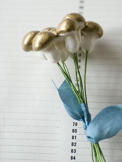MI2383_Gold_Mushrooms